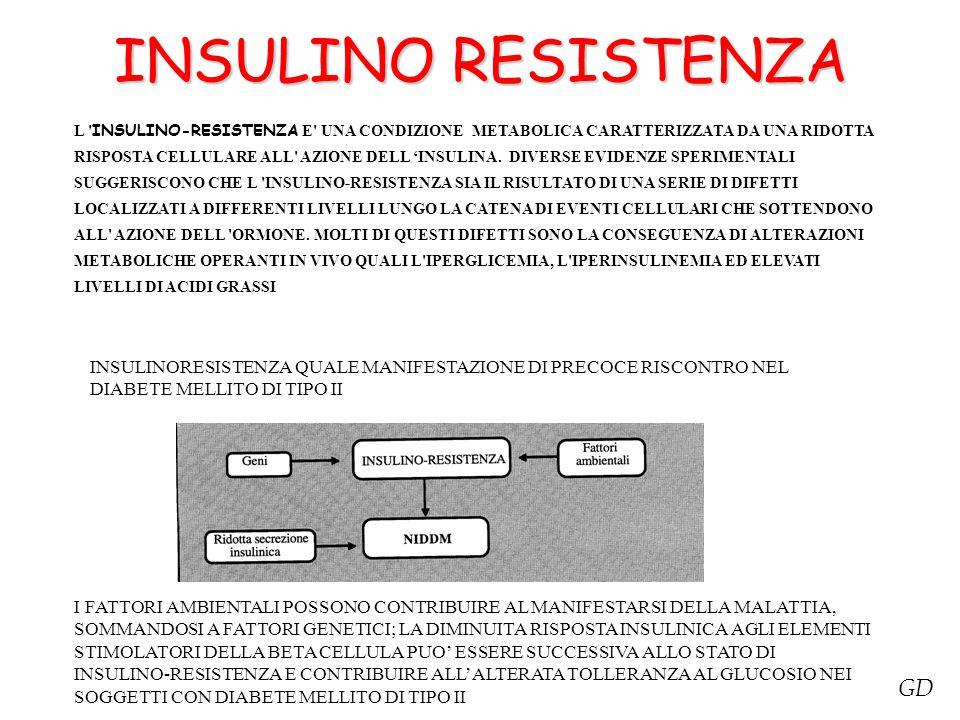 INSULINO RESISTENZA L ' INSULINO-RESISTENZA E' UNA CONDIZIONE METABOLICA CARATTERIZZATA DA UNA RIDOTTA RISPOSTA CELLULARE ALL' AZIONE DELL 'INSULINA.