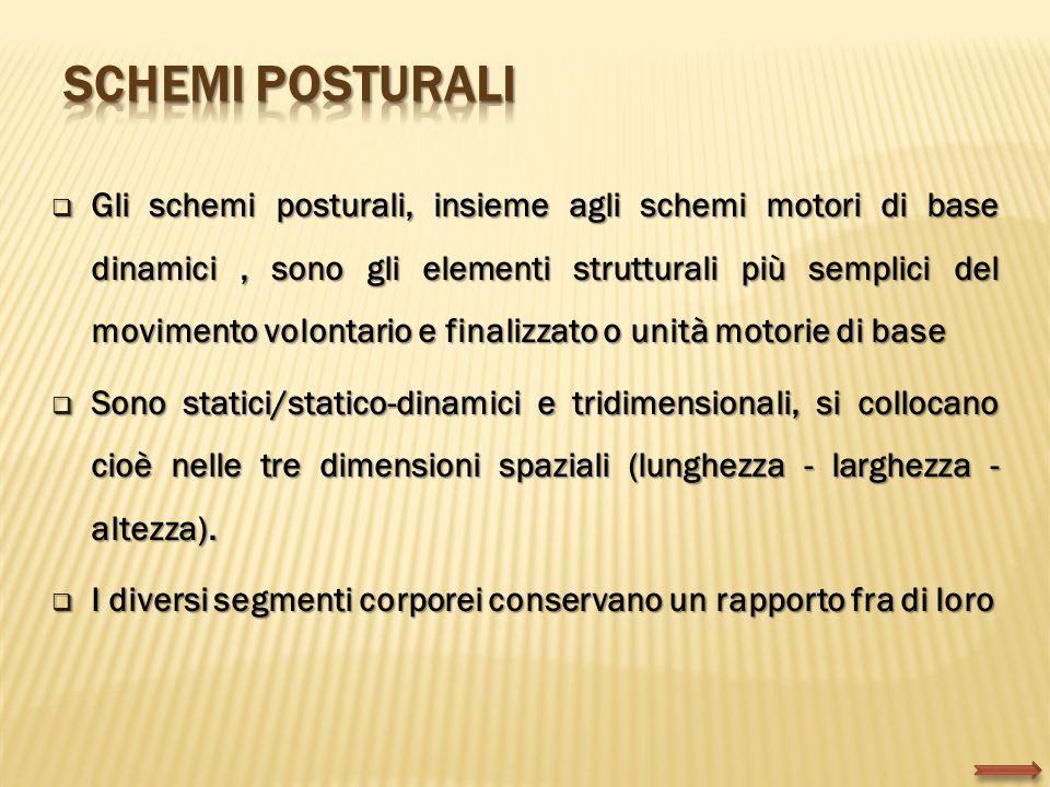  Gli schemi posturali, insieme agli schemi motori di base dinamici, sono gli elementi strutturali più semplici del movimento volontario e finalizzato