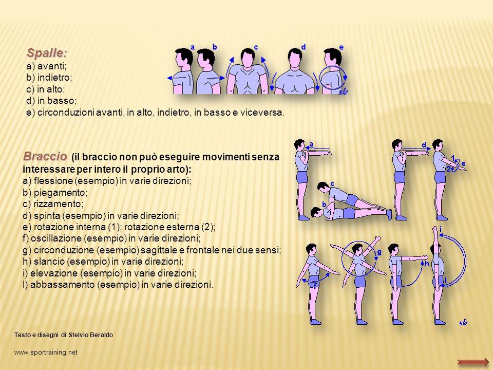 Spalle: a) avanti; b) indietro; c) in alto; d) in basso; e) circonduzioni avanti, in alto, indietro, in basso e viceversa. Braccio Braccio (il braccio