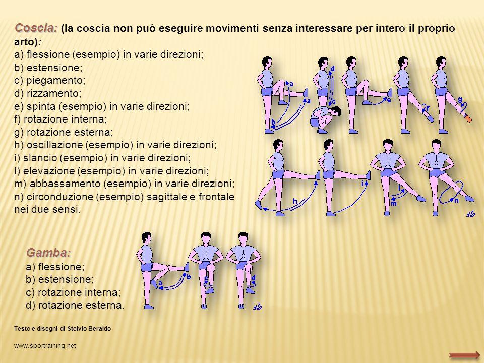 Coscia: Coscia: (la coscia non può eseguire movimenti senza interessare per intero il proprio arto): a) flessione (esempio) in varie direzioni; b) est