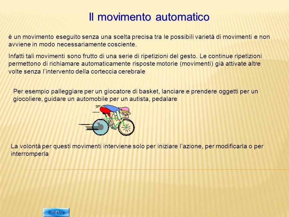 Il movimento automatico è un movimento eseguito senza una scelta precisa tra le possibili varietà di movimenti e non avviene in modo necessariamente c