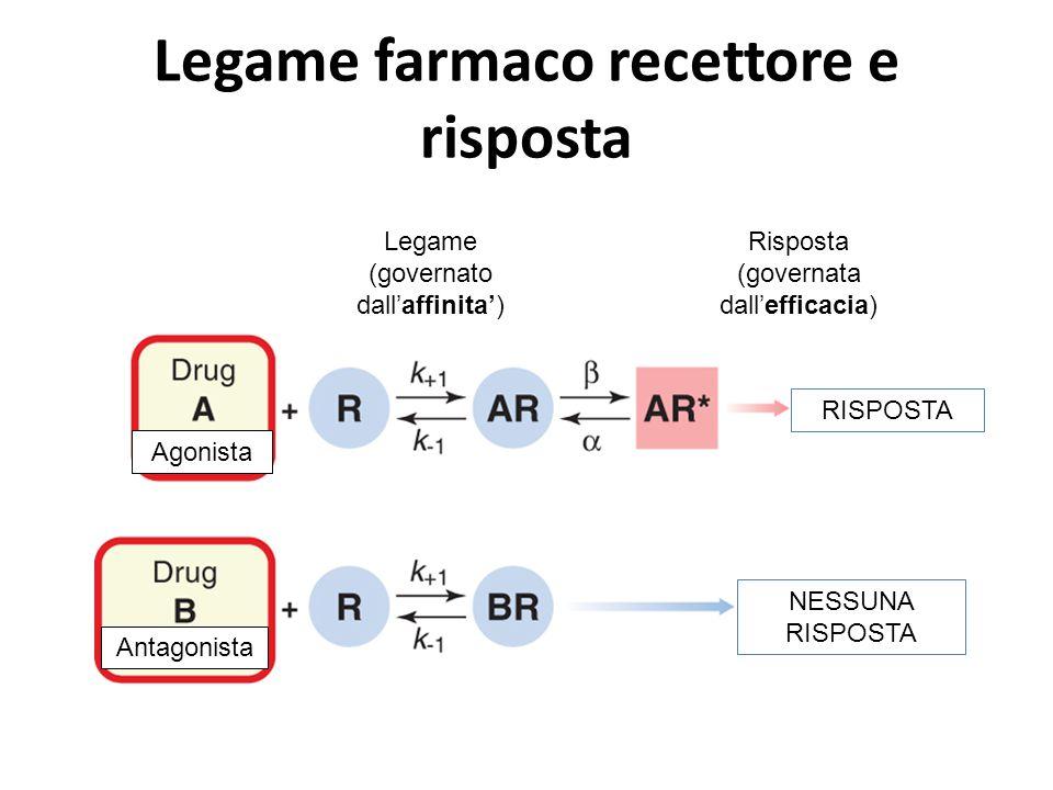 Legame farmaco recettore e risposta Legame (governato dall'affinita') Risposta (governata dall'efficacia) RISPOSTA NESSUNA RISPOSTA Agonista Antagonis