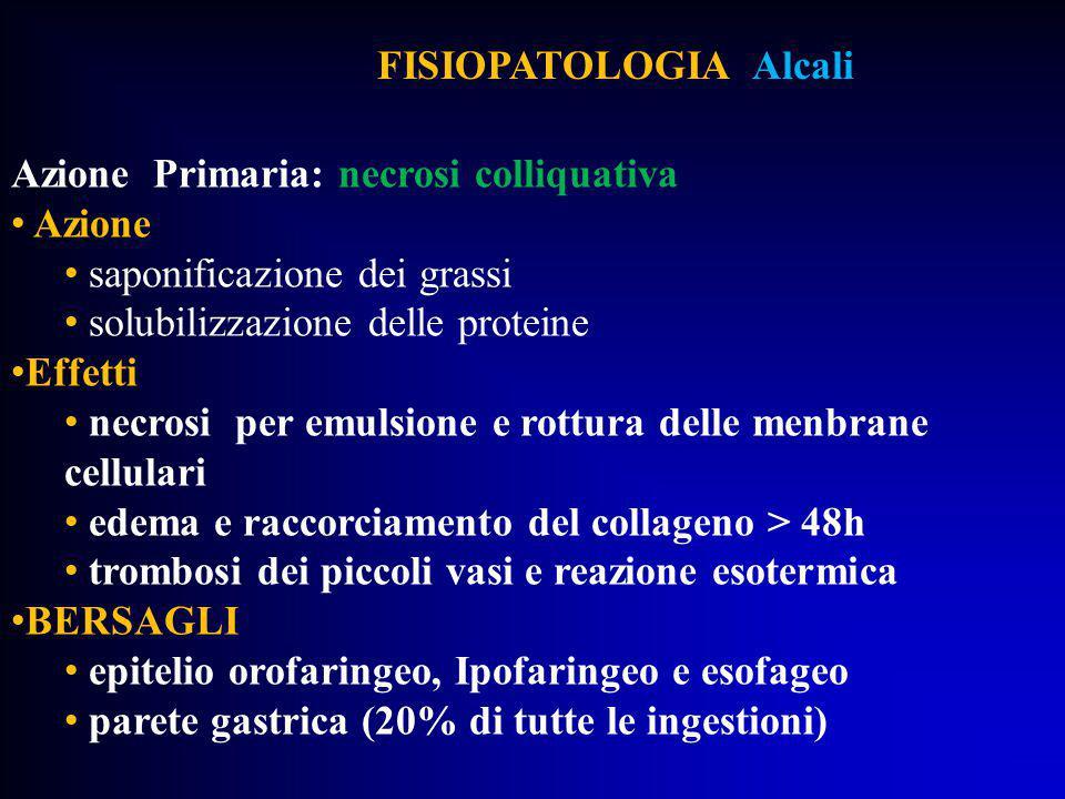 FISIOPATOLOGIA Alcali Azione Primaria: necrosi colliquativa Azione saponificazione dei grassi solubilizzazione delle proteine Effetti necrosi per emul