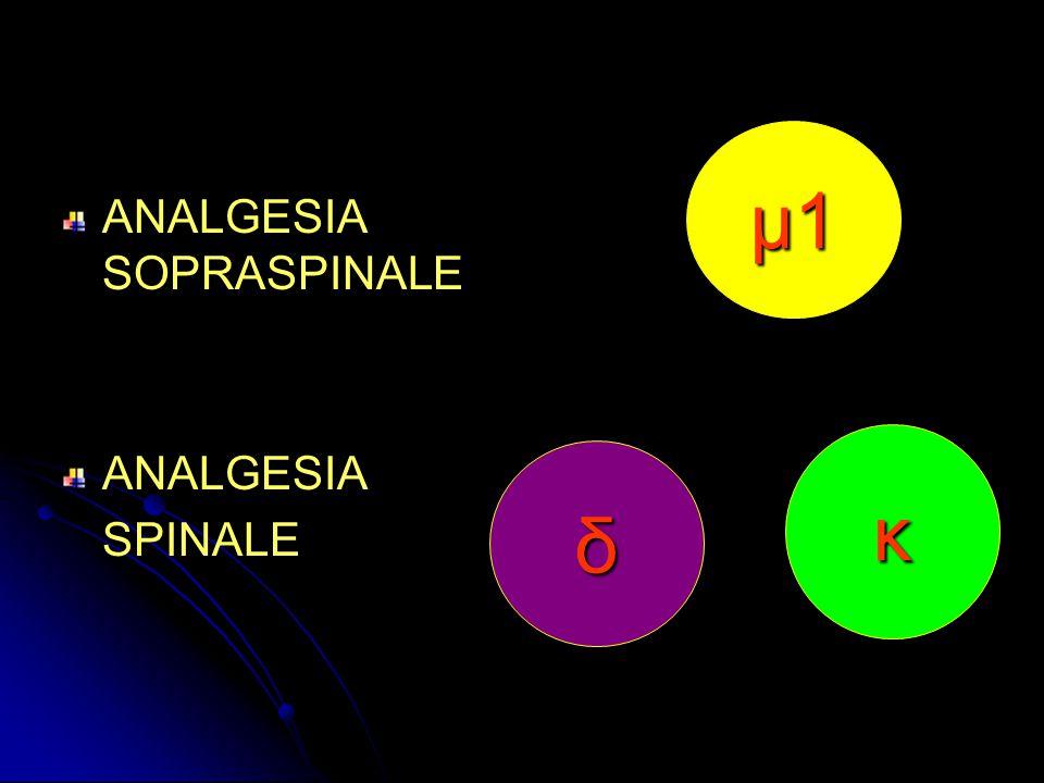 μ1μ1μ1μ1 ANALGESIA SOPRASPINALE ANALGESIA SPINALE δ κ