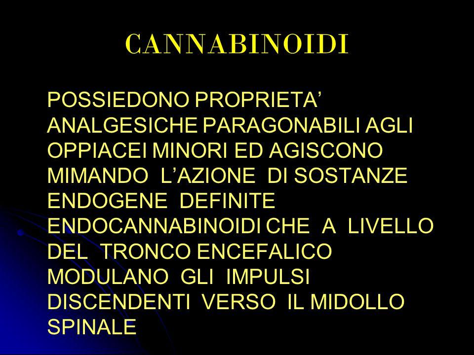 CANNABINOIDI POSSIEDONO PROPRIETA' ANALGESICHE PARAGONABILI AGLI OPPIACEI MINORI ED AGISCONO MIMANDO L'AZIONE DI SOSTANZE ENDOGENE DEFINITE ENDOCANNABINOIDI CHE A LIVELLO DEL TRONCO ENCEFALICO MODULANO GLI IMPULSI DISCENDENTI VERSO IL MIDOLLO SPINALE