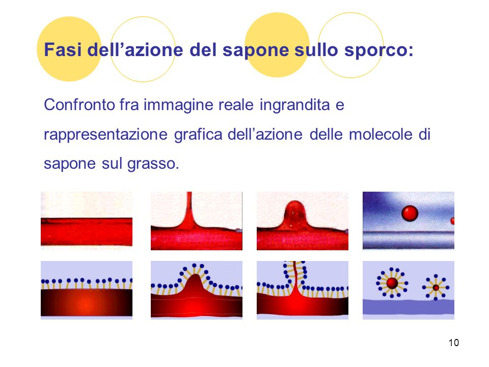 10 Fasi dell'azione del sapone sullo sporco: Confronto fra immagine reale ingrandita e rappresentazione grafica dell'azione delle molecole di sapone s
