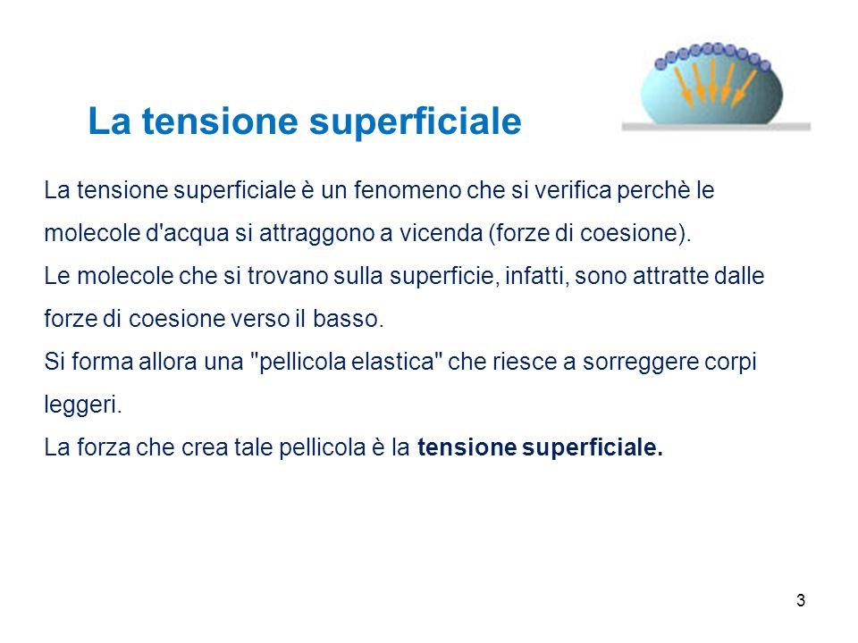 3 La tensione superficiale è un fenomeno che si verifica perchè le molecole d'acqua si attraggono a vicenda (forze di coesione). Le molecole che si tr