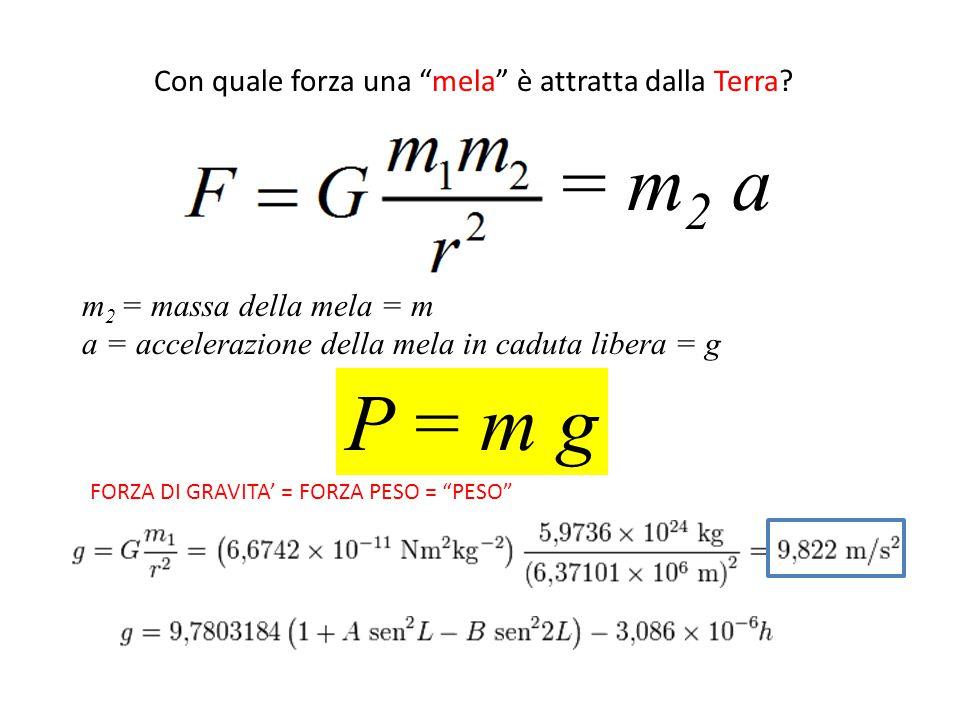 FORZA PESO P = m g Applicata nel BARICENTRO rivolta verso il basso WEIGHT = PESO = P = W