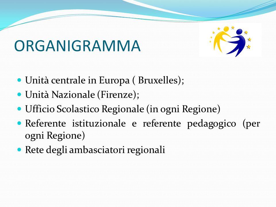 ORGANIGRAMMA Unità centrale in Europa ( Bruxelles); Unità Nazionale (Firenze); Ufficio Scolastico Regionale (in ogni Regione) Referente istituzionale
