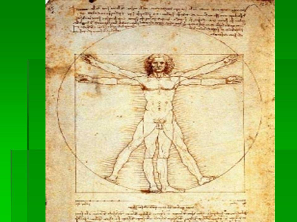 Scrittura  Leonardo scriveva da destra a sinistra perché era mancino, per leggere quello che scriveva dovevi riflettere allo specchio la scheda.