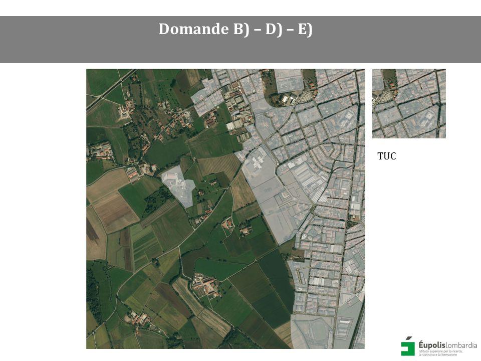 Sovrapposizione DUSAF 4.0 (2012) classe 1 Aree antropizzate esclusa la classe 1412 (aree verdi incolte) + TUC Domande B) – D) – E)