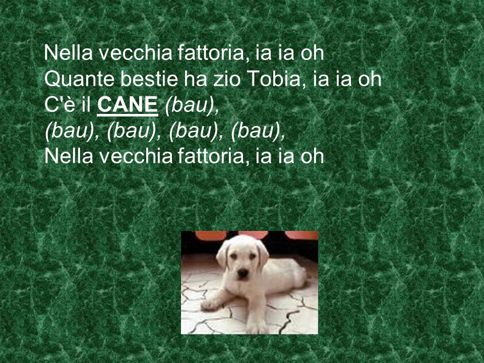 Nella vecchia fattoria, ia ia oh Quante bestie ha zio Tobia, ia ia oh C è il CANE (bau), (bau), (bau), (bau), (bau), Nella vecchia fattoria, ia ia oh
