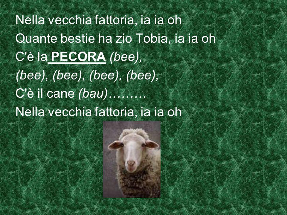 Nella vecchia fattoria, ia ia oh Quante bestie ha zio Tobia, ia ia oh C è la PECORA (bee), (bee), (bee), C è il cane (bau)……… Nella vecchia fattoria, ia ia oh