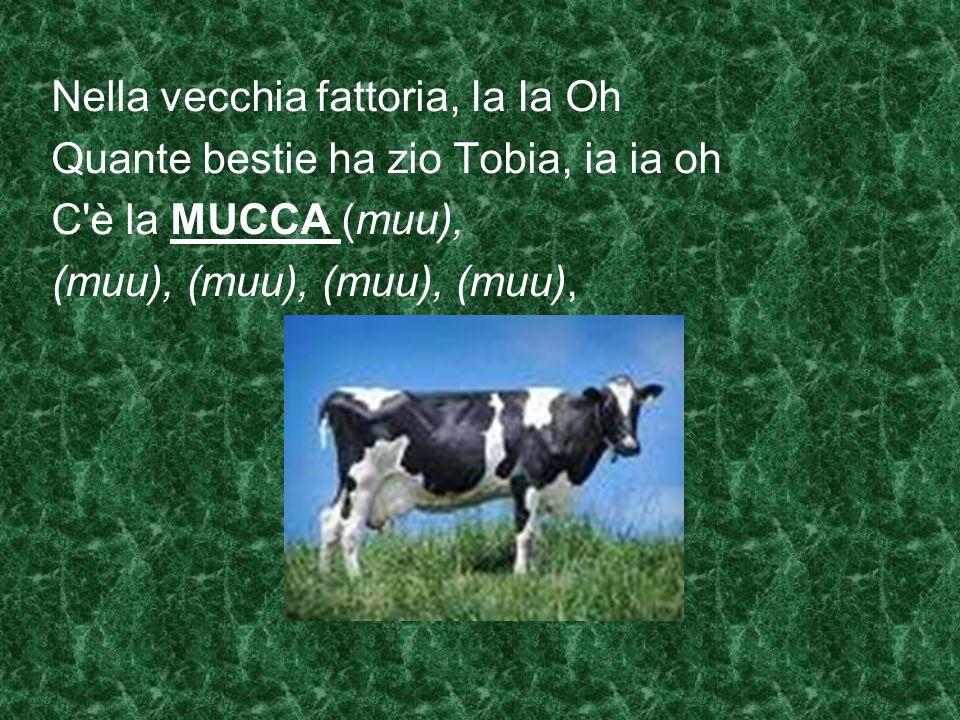 Quante bestie ha zio Tobia, ia ia oh C'è il MAIALE (grunf), (grunf), (grunf), (grunf), (grunf), C'è l'anatra (quack),… C'è la pecora (bee), ……. C'è il