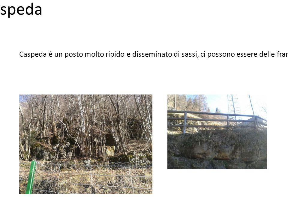 Caspeda Caspeda è un posto molto ripido e disseminato di sassi, ci possono essere delle frane.