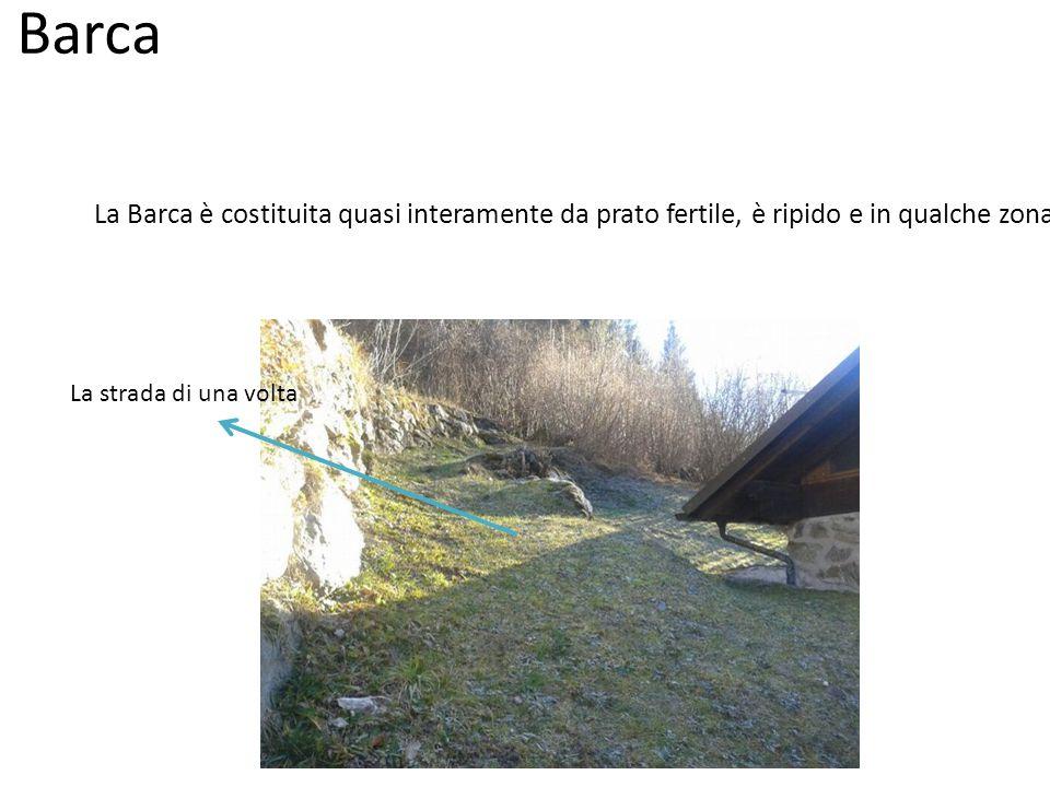 Piada Piada è un prato abbandonato, molto ripido e con una boscaglia di nocciolo.