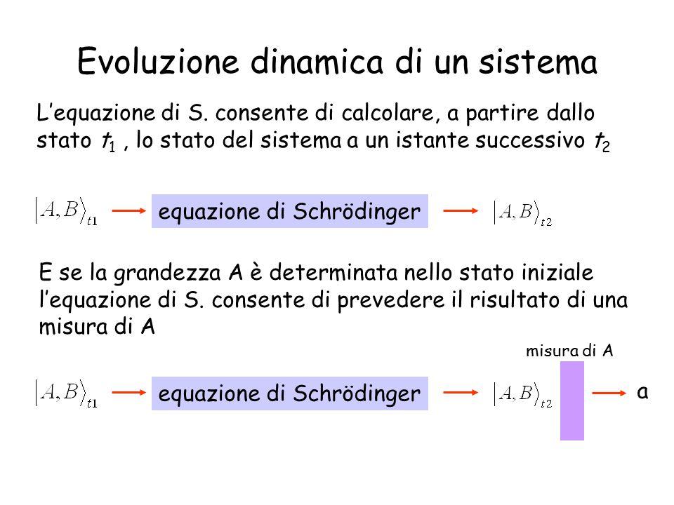 Evoluzione dinamica di un sistema L'equazione di S.