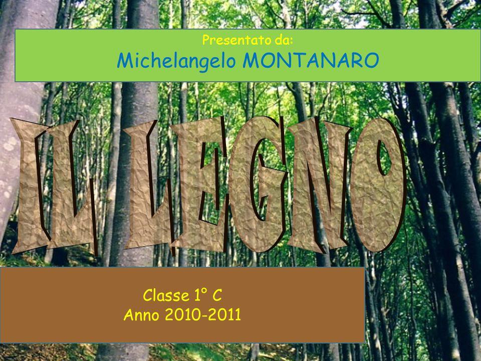 Classe 1° C Anno 2010-2011 Presentato da: Michelangelo MONTANARO