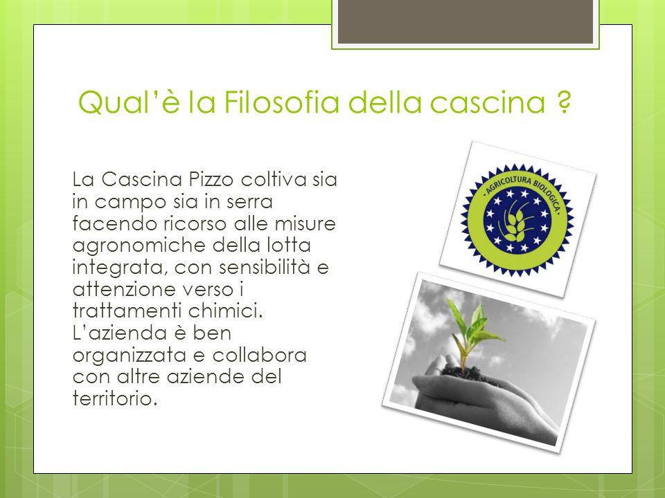 La sua storia Nasce nel Parco Sud di Milano intorno al 1700, da sempre produce uova e ortaggi di ogni genere. Nasce grazie alla presenza di fontanili.