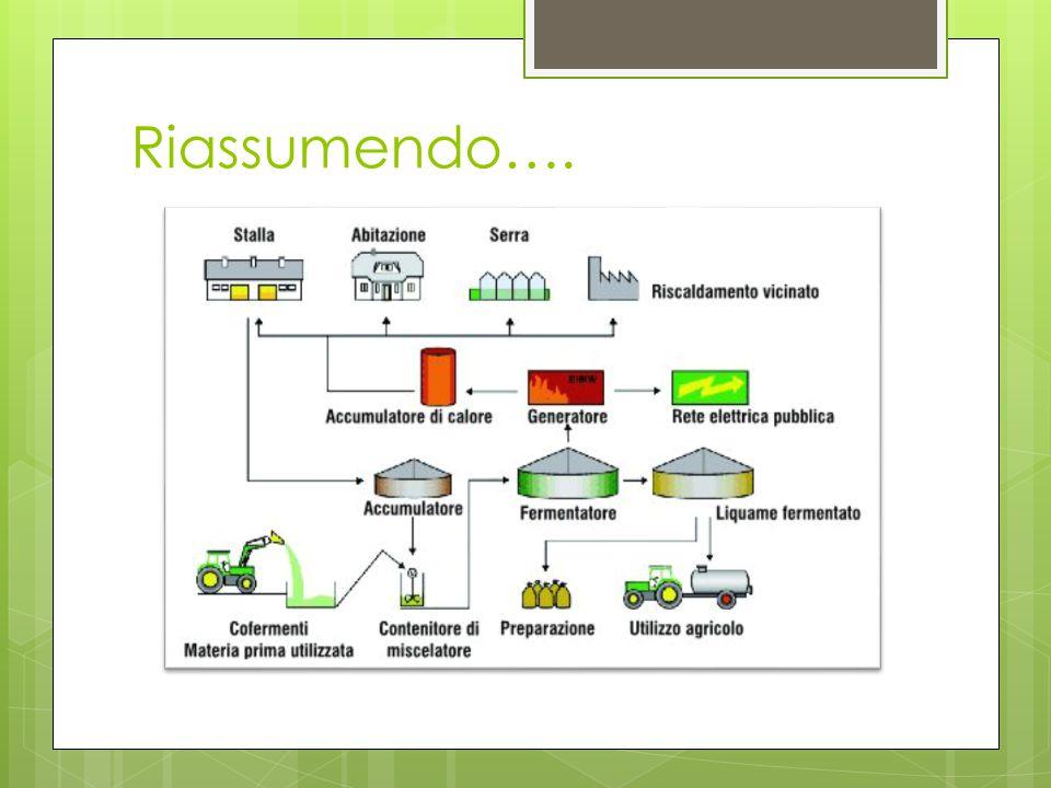 Il biodigestore L'energia usata deriva prevalentemente dal biodigestore. Nel biodigestore vi è una decomposizione anaerobica (senza ossigeno), da cui