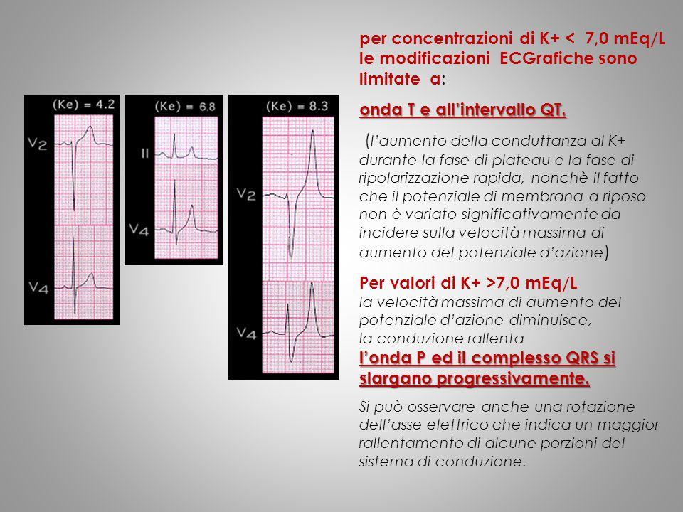 per concentrazioni di K+ < 7,0 mEq/L le modificazioni ECGrafiche sono limitate a : onda T e all'intervallo QT. ( l'aumento della conduttanza al K+ dur