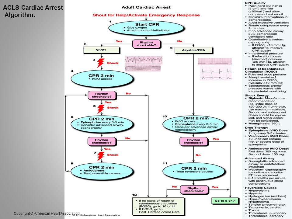 ACLS Cardiac Arrest Algorithm. Copyright © American Heart Association