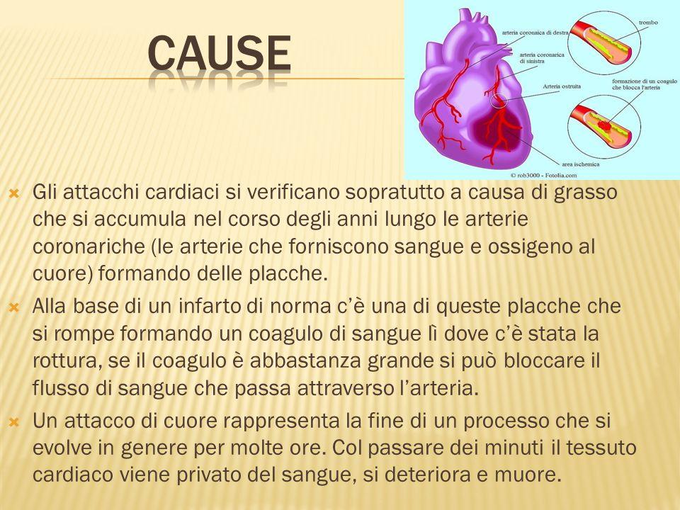  Gli attacchi cardiaci si verificano sopratutto a causa di grasso che si accumula nel corso degli anni lungo le arterie coronariche (le arterie che f