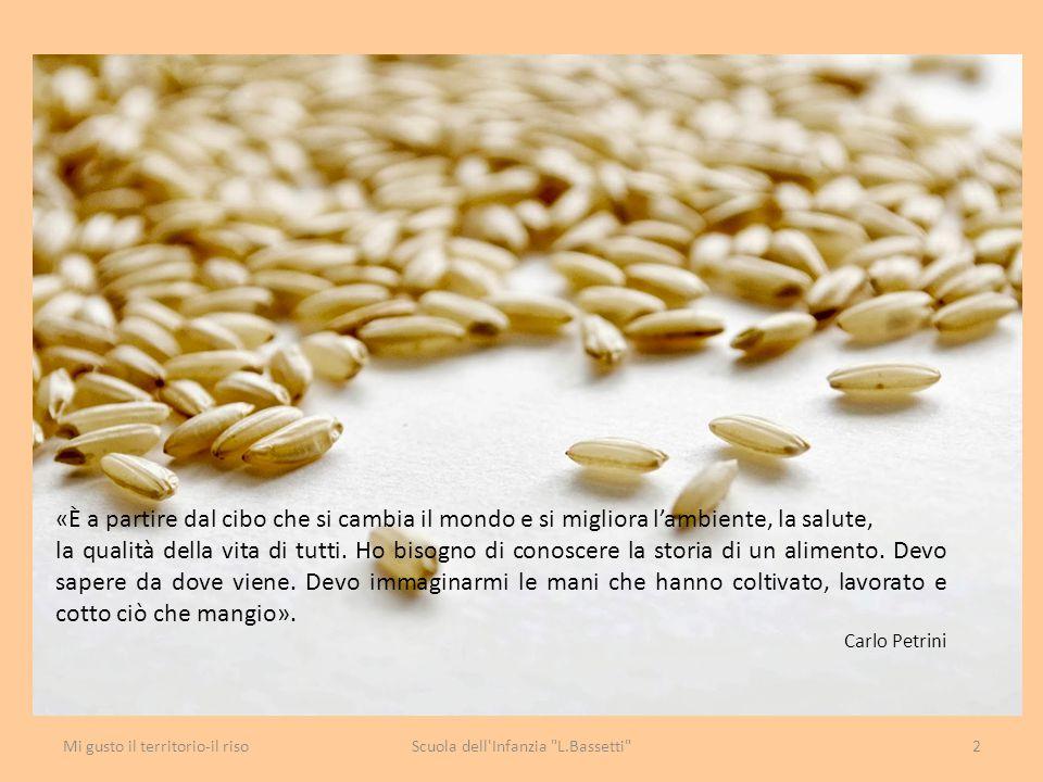 A documentazione del percorso realizziamo il libro «Il riso» con tutte le esperienze proposte Scuola dell Infanzia L.Bassetti 23Mi gusto il territorio-il riso