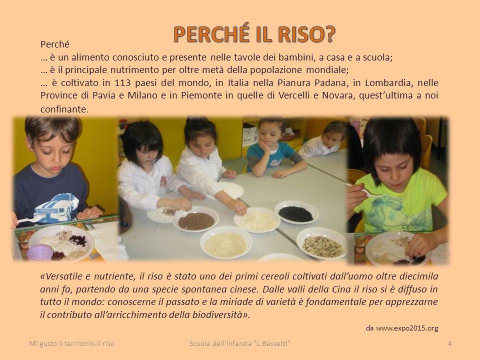 Perché … è un alimento conosciuto e presente nelle tavole dei bambini, a casa e a scuola; … è il principale nutrimento per oltre metà della popolazion