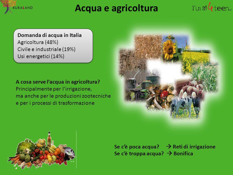 A cosa serve l'acqua in agricoltura? Principalmente per l'irrigazione, ma anche per le produzioni zootecniche e per i processi di trasformazione Se c'