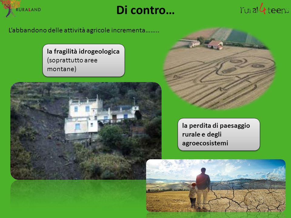 Di contro… L'abbandono delle attività agricole incrementa…….. la fragilità idrogeologica (soprattutto aree montane) la perdita di paesaggio rurale e d