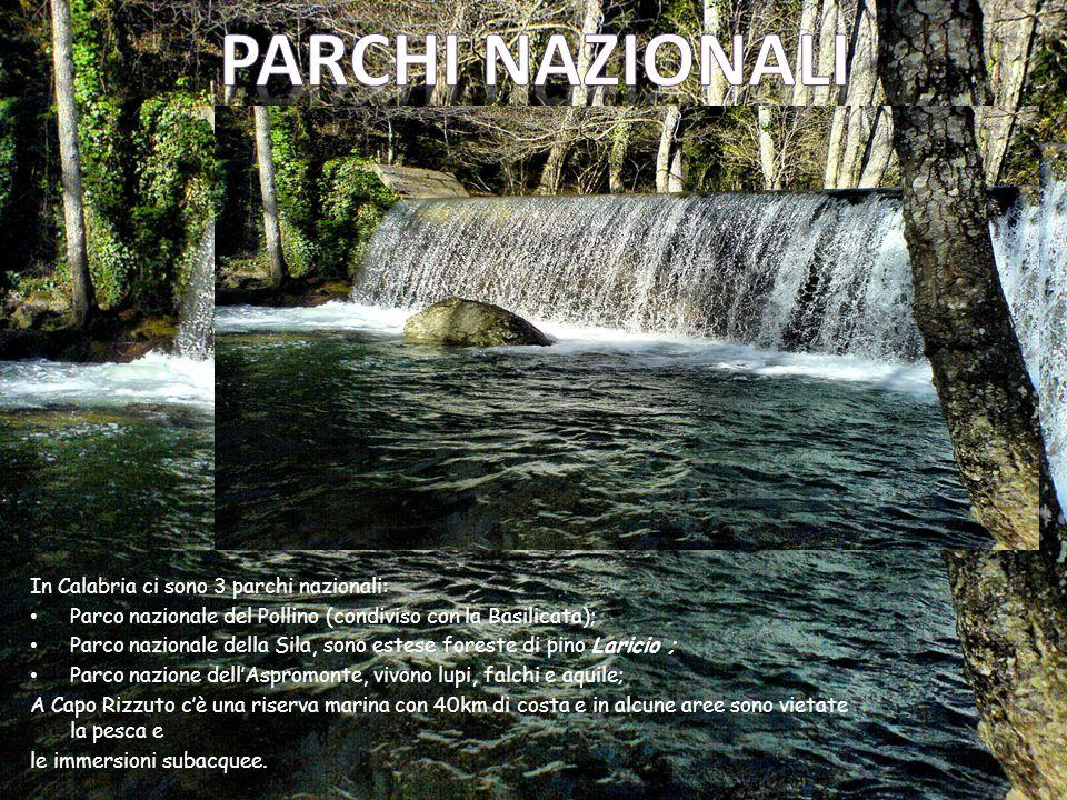 In Calabria ci sono 3 parchi nazionali: Parco nazionale del Pollino (condiviso con la Basilicata); Parco nazionale della Sila, sono estese foreste di pino Laricio ; Parco nazione dell'Aspromonte, vivono lupi, falchi e aquile; A Capo Rizzuto c'è una riserva marina con 40km di costa e in alcune aree sono vietate la pesca e le immersioni subacquee.