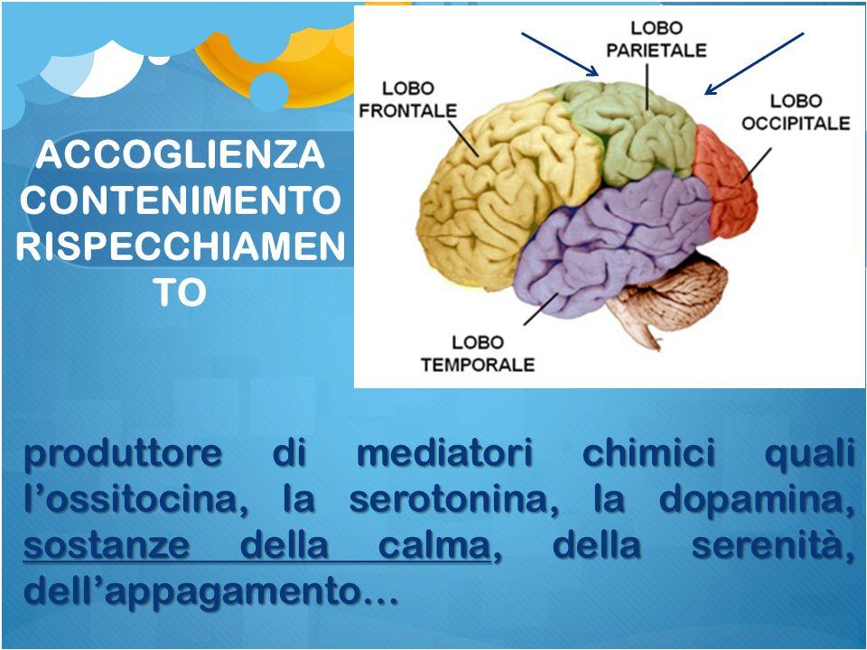 produttore di mediatori chimici quali l'ossitocina, la serotonina, la dopamina, sostanze della calma, della serenità, dell'appagamento… ACCOGLIENZA CO