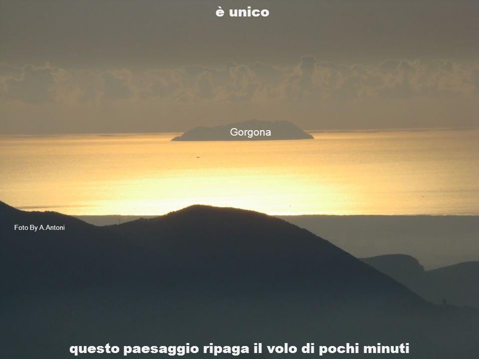 è unico Gorgona questo paesaggio ripaga il volo di pochi minuti Foto By A.Antoni