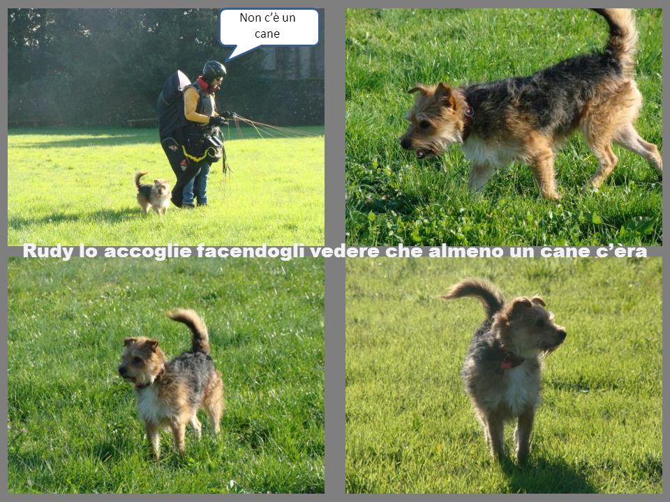 Rudy lo accoglie facendogli vedere che almeno un cane c'èra Non c'è un cane