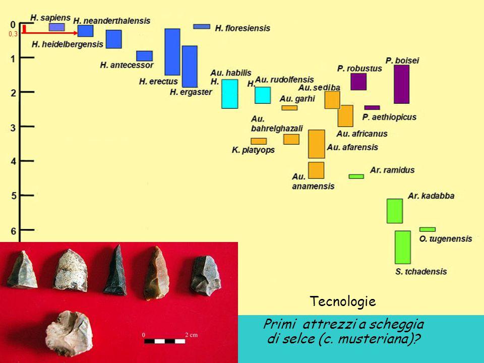 Tecnologie Primi attrezzi a scheggia di selce (c. musteriana)? 0,3
