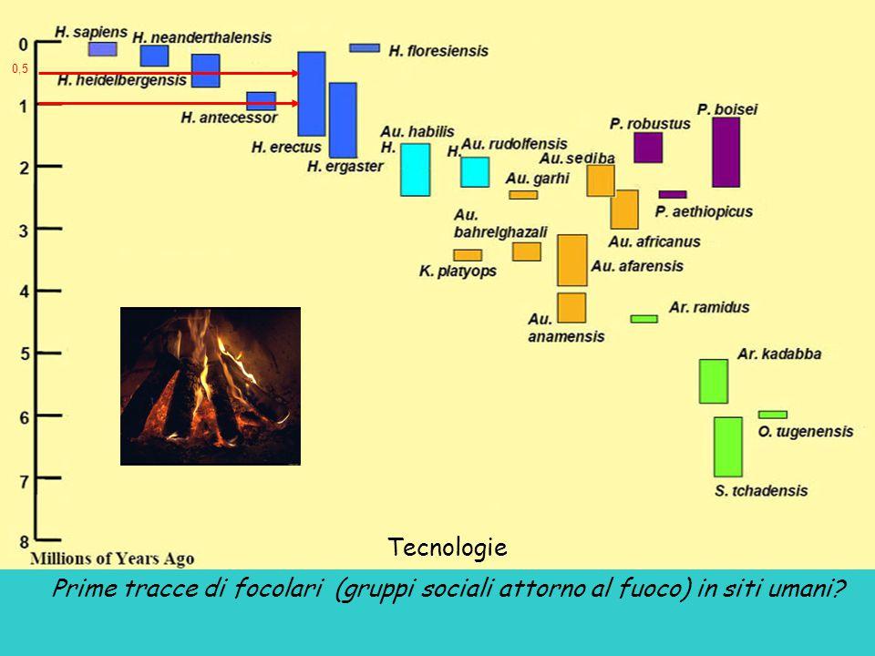 Tecnologie Prime tracce di focolari (gruppi sociali attorno al fuoco) in siti umani? 0,5