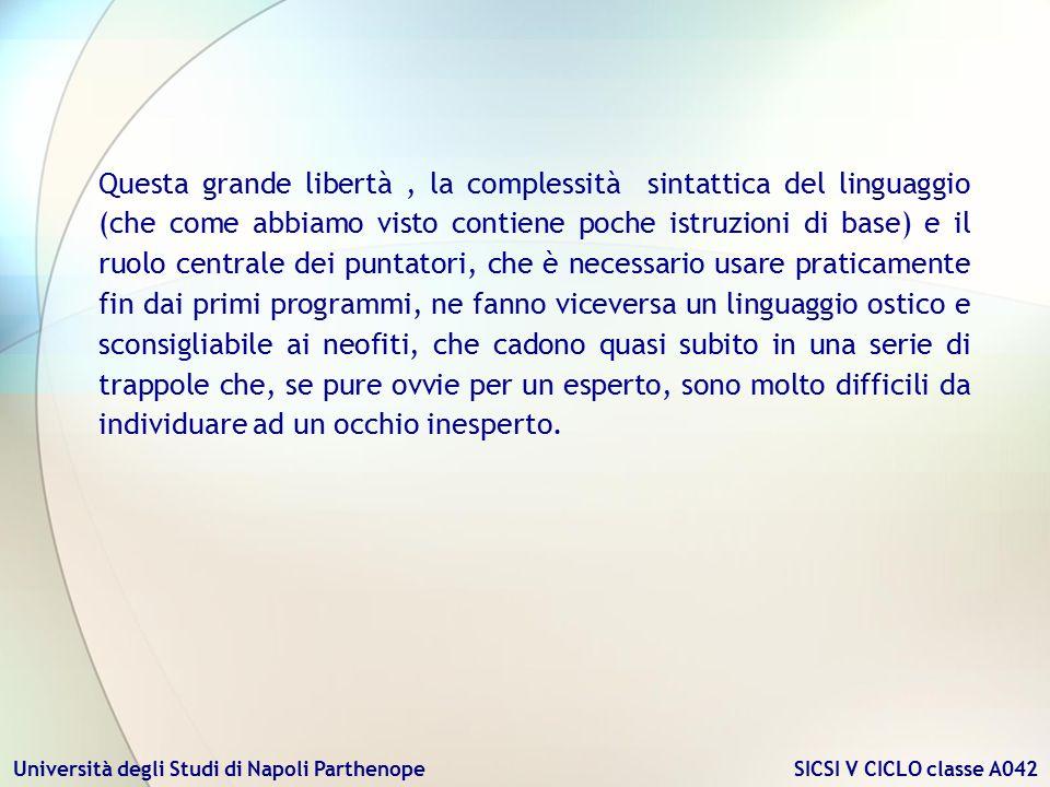 Università degli Studi di Napoli Parthenope SICSI V CICLO classe A042 Questa grande libertà, la complessità sintattica del linguaggio (che come abbiam
