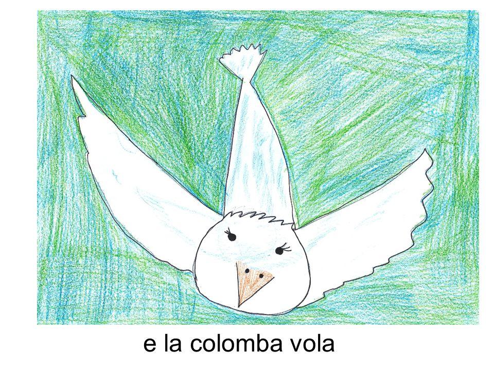 e la colomba vola