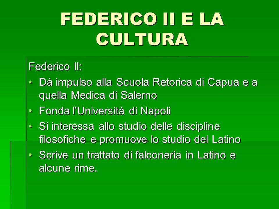 FEDERICO II E LA CULTURA Federico II: Dà impulso alla Scuola Retorica di Capua e a quella Medica di SalernoDà impulso alla Scuola Retorica di Capua e