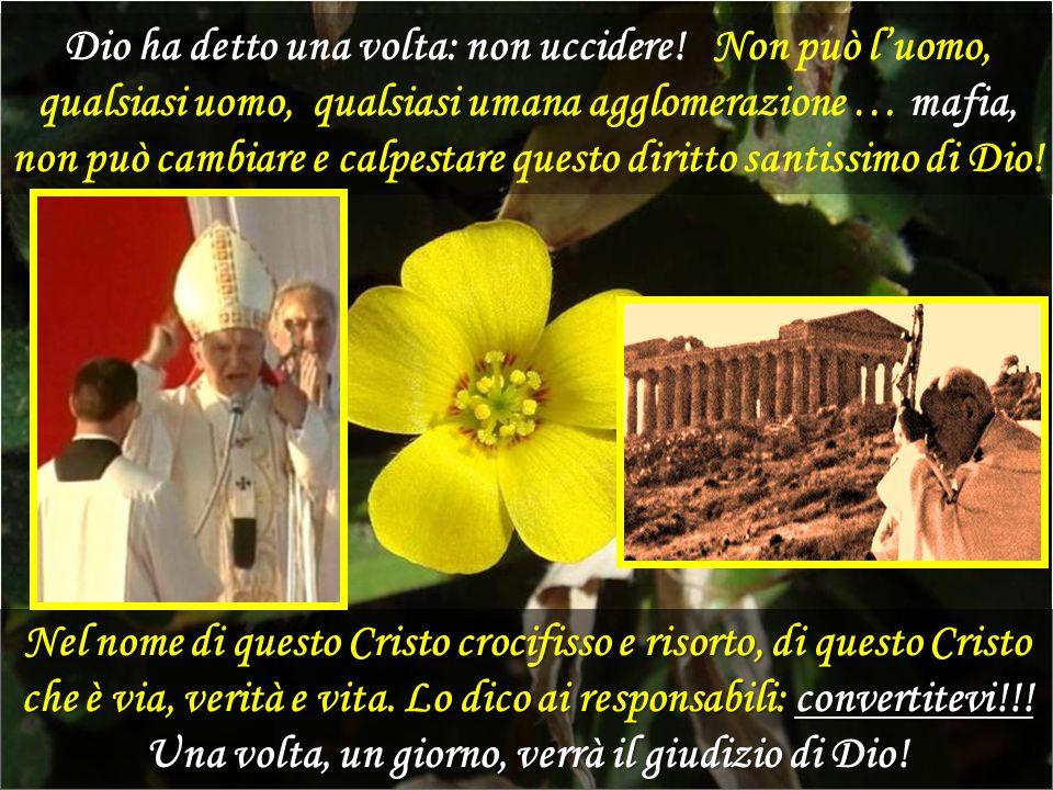 Quanto attuale è la spiritualità della Croce vissuta dall'umile Cappuccino di Pietrelcina (Padre Pio)! Il nostro tempo ha bisogno di riscoprirne il va