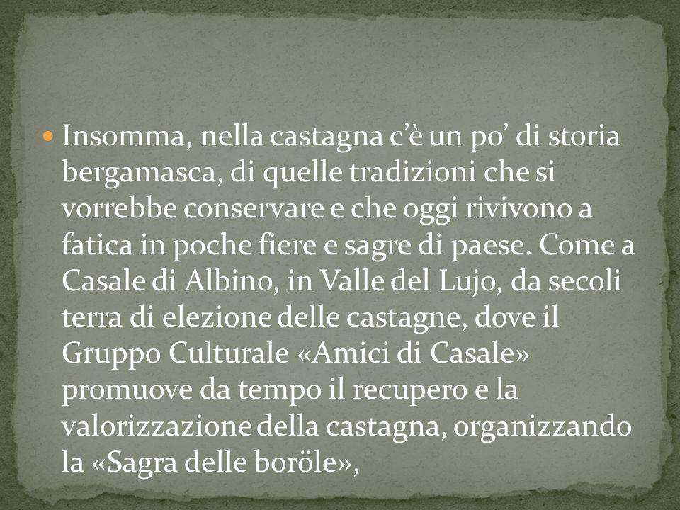 Quanto ci sia di vero in questo singolare racconto non lo sappiamo ma è certa la prima citazione (1490) di Giovanni Bressani, poeta vernacolo, che scrive: