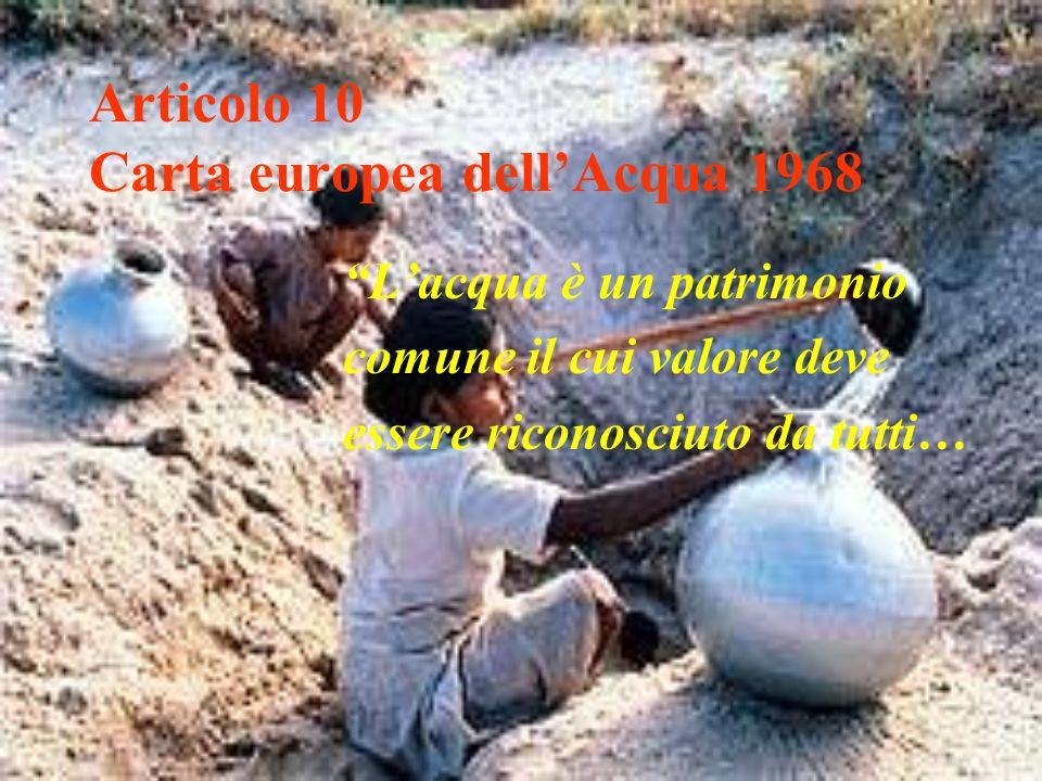 """Articolo 10 Carta europea dell'Acqua 1968 """"L'acqua è un patrimonio comune il cui valore deve essere riconosciuto da tutti…"""