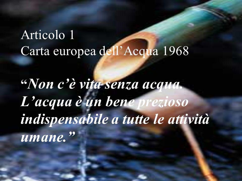 """Articolo 1 Carta europea dell'Acqua 1968 """" Non c'è vita senza acqua. L'acqua è un bene prezioso indispensabile a tutte le attività umane."""""""