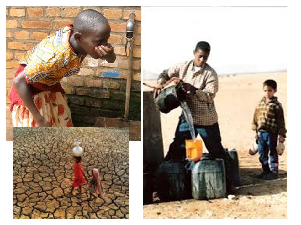 Articolo 10 Carta europea dell'Acqua 1968 L'acqua è un patrimonio comune il cui valore deve essere riconosciuto da tutti…