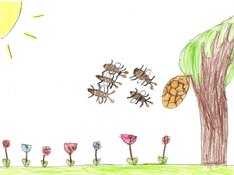 UN'AVVENTURA A LIETO FINE È primavera, il sole è appena salito alto nel cielo e riempie di luce l'arnia e le api si svegliano.
