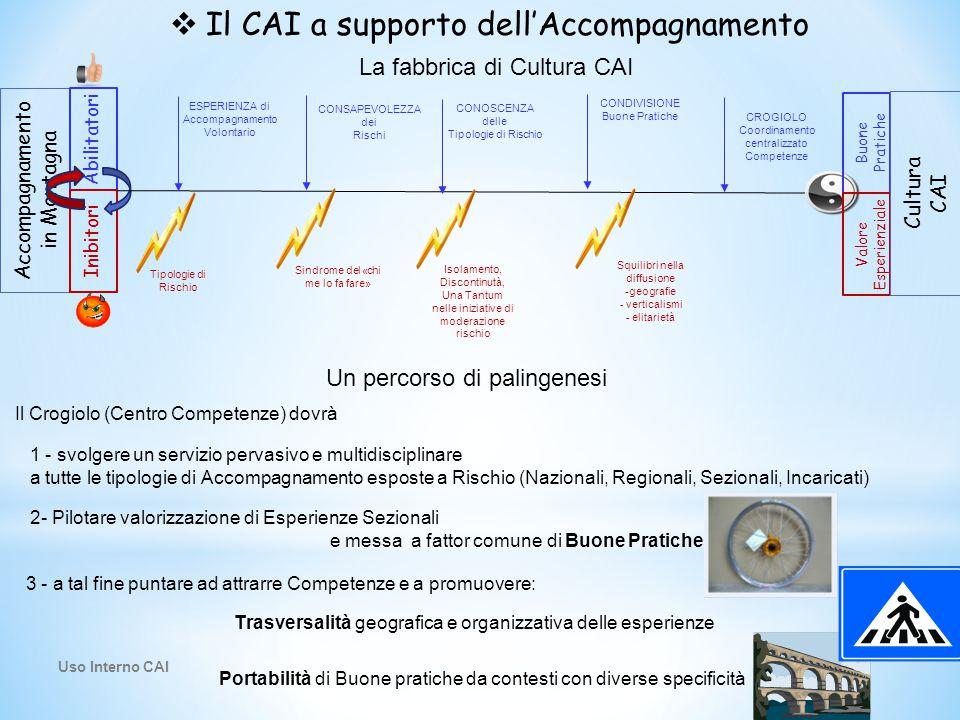  Il CAI a supporto dell'Accompagnamento La fabbrica di Cultura CAI Accompagnamento in Montagna Abilitatori Inibitori ESPERIENZA di Accompagnamento Vo