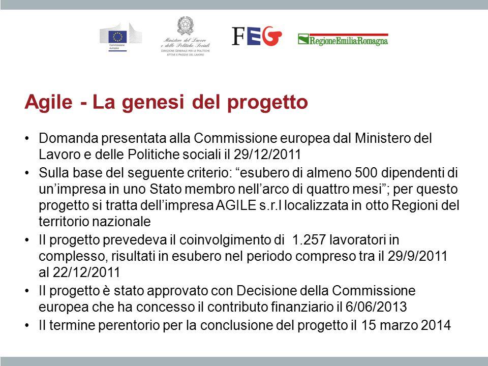 Agile - La genesi del progetto Domanda presentata alla Commissione europea dal Ministero del Lavoro e delle Politiche sociali il 29/12/2011 Sulla base