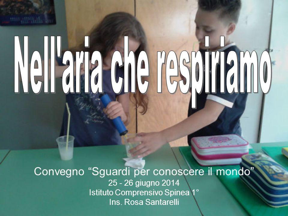 """Convegno """"Sguardi per conoscere il mondo"""" 25 - 26 giugno 2014 Istituto Comprensivo Spinea 1° Ins. Rosa Santarelli"""