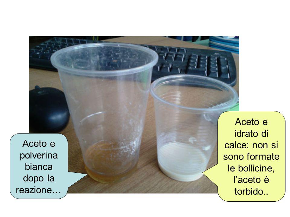 Aceto e polverina bianca dopo la reazione… Aceto e idrato di calce: non si sono formate le bollicine, l'aceto è torbido..